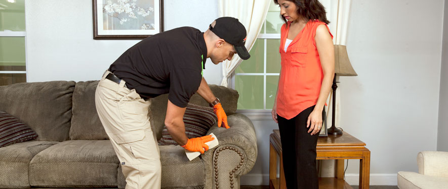 Rossville, GA carpet upholstery cleaning